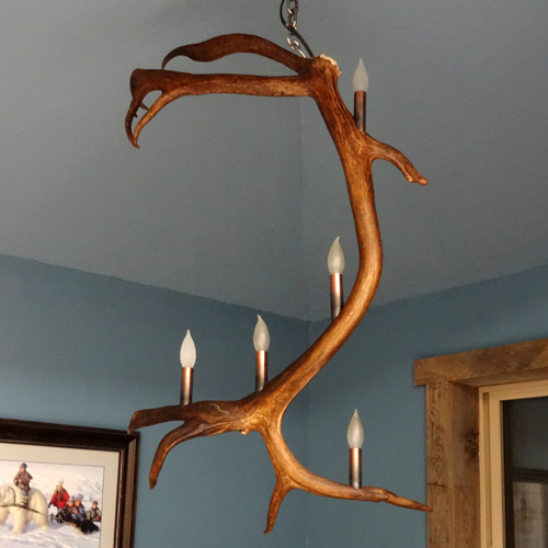 caribou antler pendant light