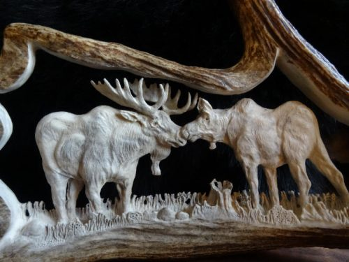 moose antler carving bull and cow moose