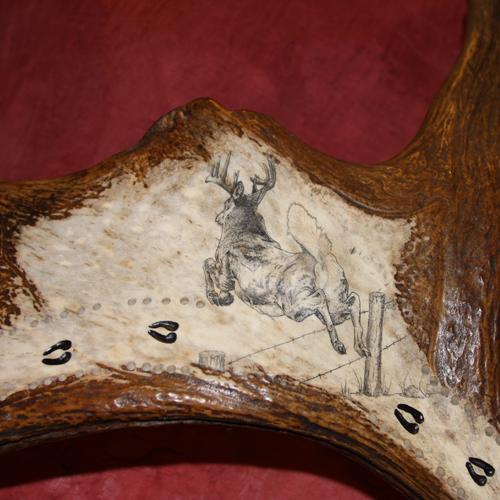 Scrimshaw of whitetail deer