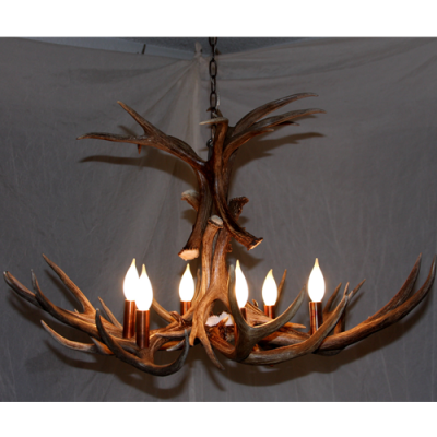 Flair mule deer antler chandelier