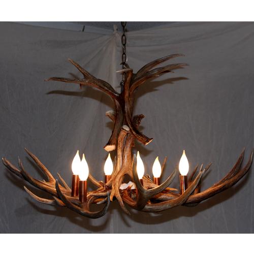 Flair mule deer antler chandelier