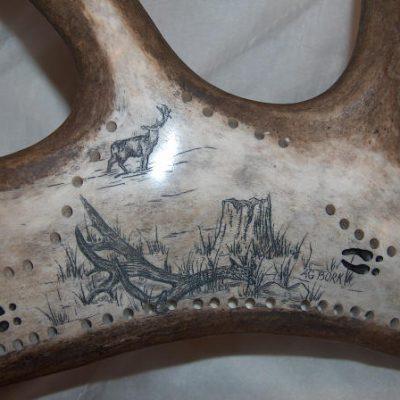 mule deer antler scrimshaw