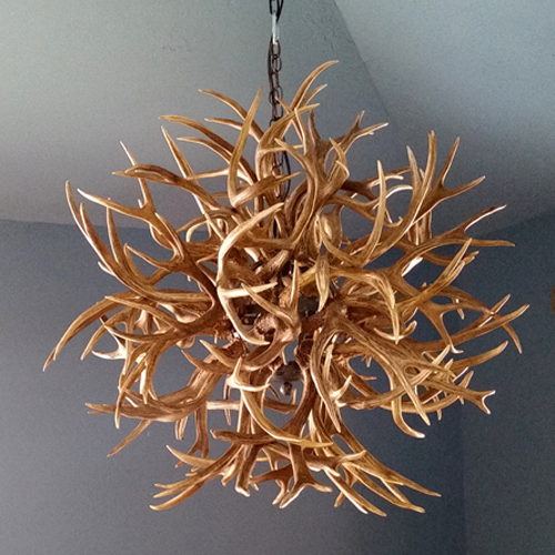 mule deer Antler ball Chandelier