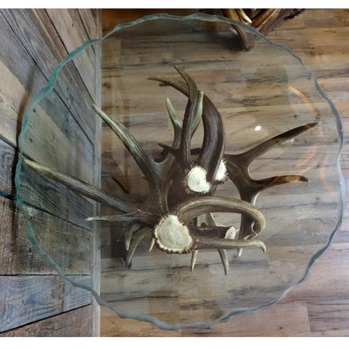 deer antler end table