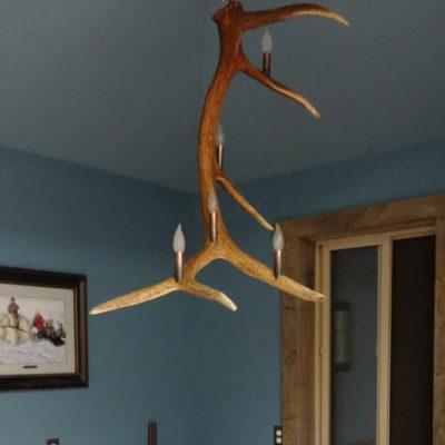 elk antler pendant light