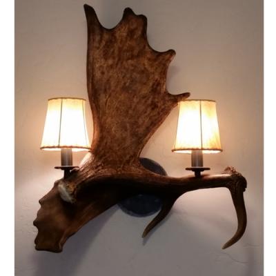 moose antler fallow deer antler sconce