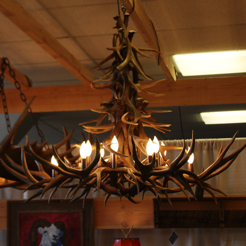 mule deer antler chandelier porcupine