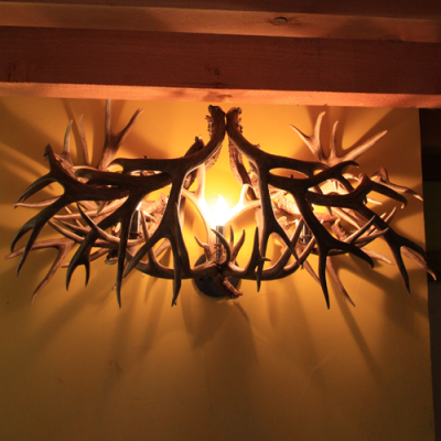 mule deer antler vanity light