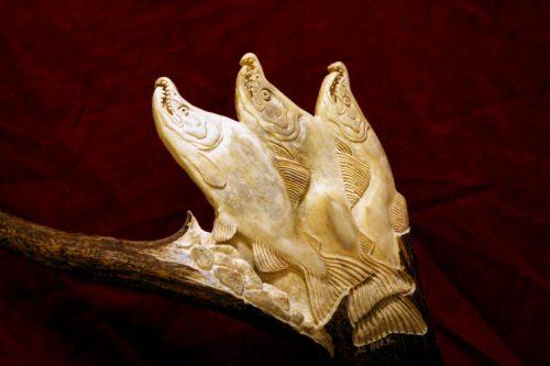 moose antler salmon carving