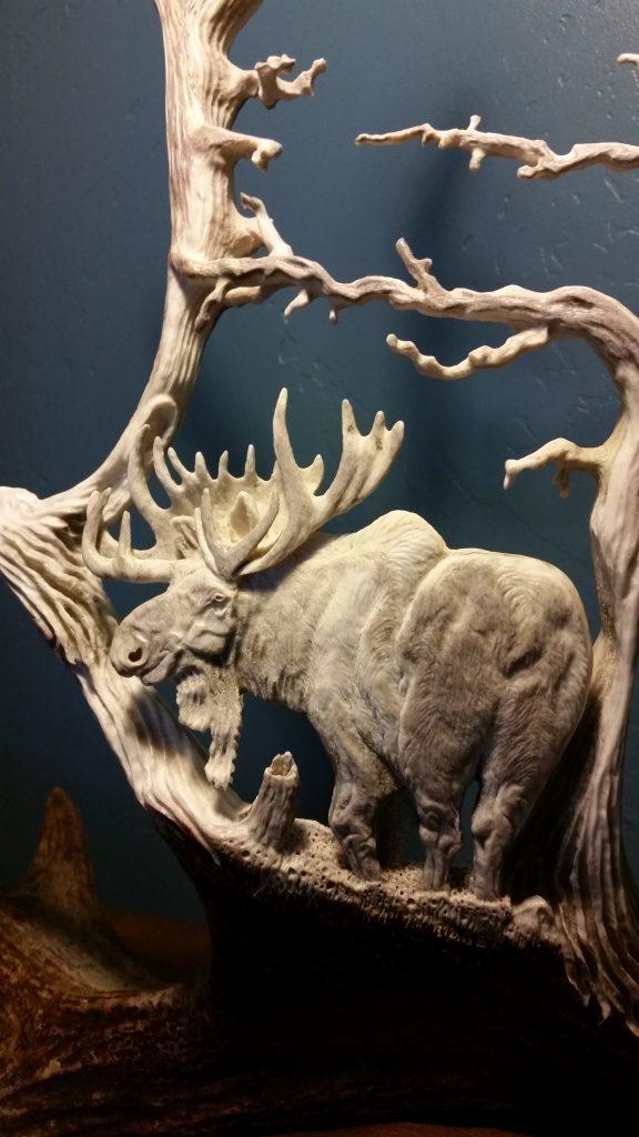 bull moose antler carving