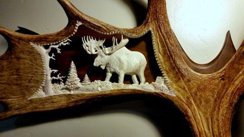 large bull moose antler carving
