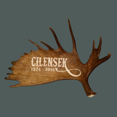XL moose antler name carving