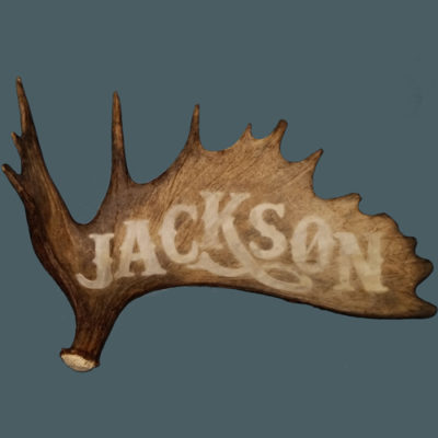 large moose antler name carving