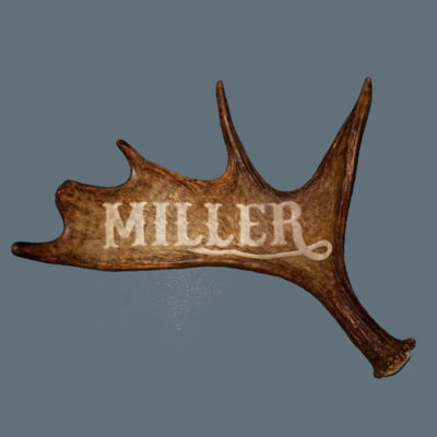small moose antler name carving