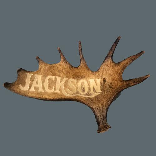 medium moose antler carving